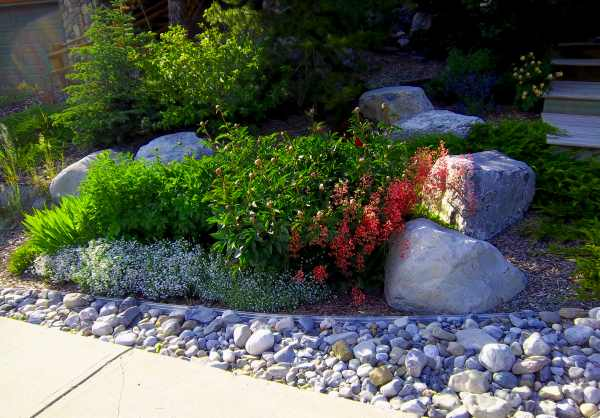 Landscaping with rocks is increasing in popularity as water consumption