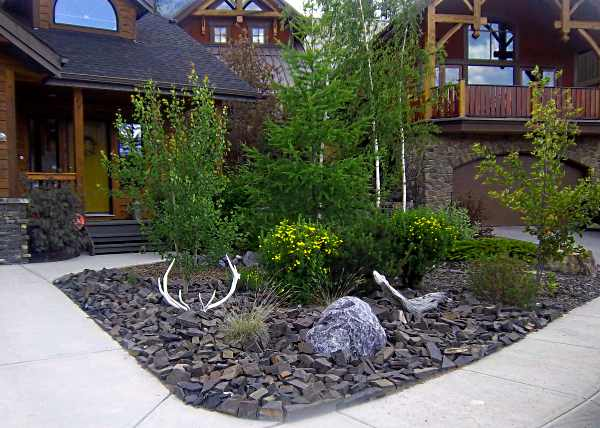Small front yard landscaping idea with almost no maintenance required