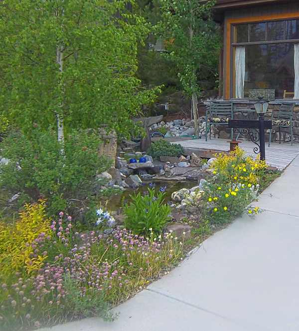 Front yard landscaping ideas pond home design for Front yard pond ideas
