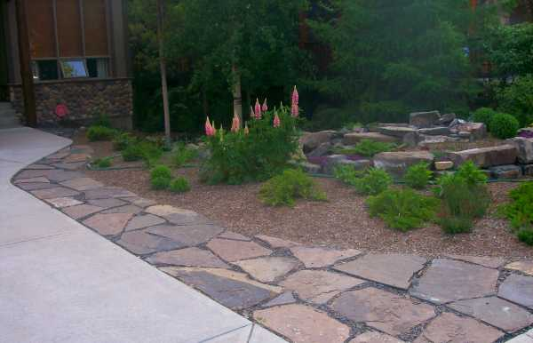 Driveway landscaping with flagstone providing a walkway that doubles as a border to a low maintenance front yard.