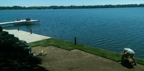 Rolling out some new sod down by the lake.