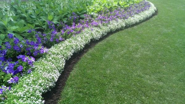 Landscaping Borders Edging 2