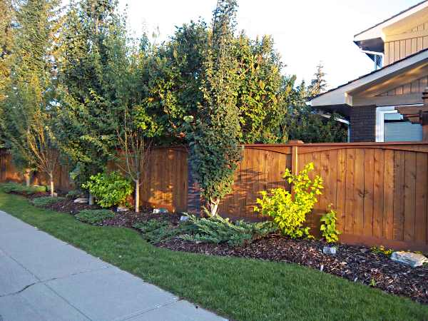 A nicely bordered garden along a sidewalk adds curb appeal and softens the look of this fence.