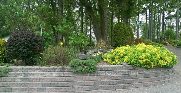 This block retaining wall provides a nice plateau for a raised garden bed at this driveway entrance.