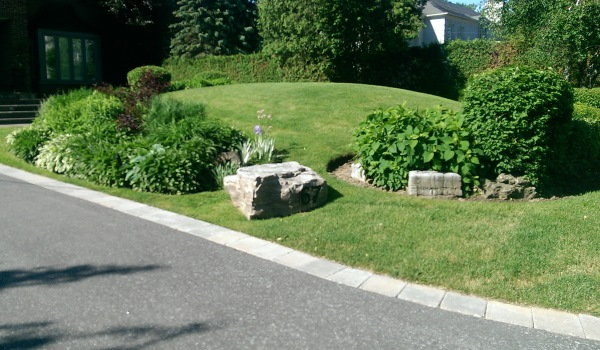 This large rock with the house number becomes a focalization of interest. It draws the eye in between two cut garden beds. Not a complete fail, but slightly awkward.