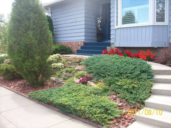 This wall made with larger natural stones has creative plantings between the cracks. Decorative rocks, low maintenance shrubs and perennials