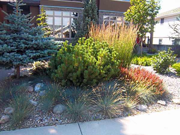 Landscaping borders edging for Ornamental grass border design