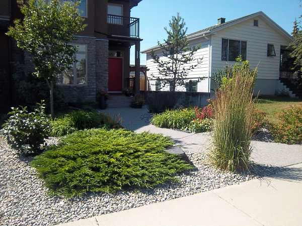 Many people looking for infill landscaping ideas for small front yards are considering low maintenance drought tolerant designs like this.