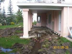 yard with excess water and drainage problems.
