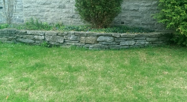Fieldstone walls built with weathered stones have tons of appeal. this wall has been mortared in the back to make it appear like a dry stacked wall.