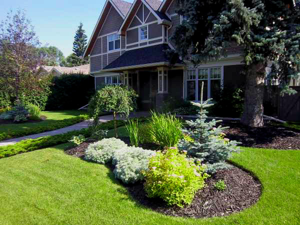 A simple yet beautiful front yard landscape design with low maintenance mulched garden beds.