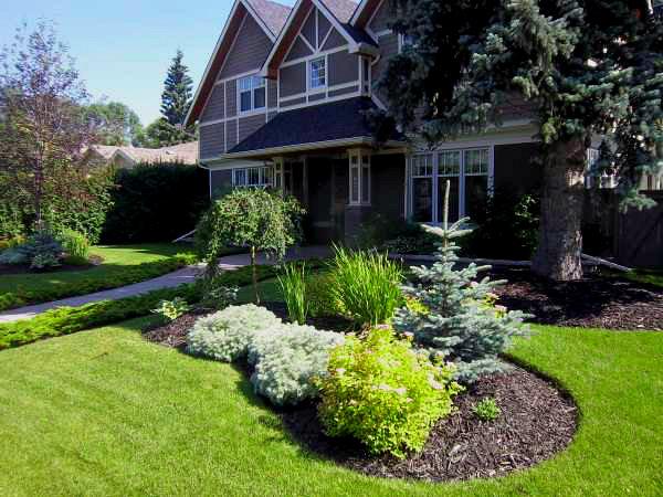 Frontyard Landscaping