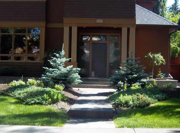 A small front yard walkway with symetrically balanced low maintenance beds.