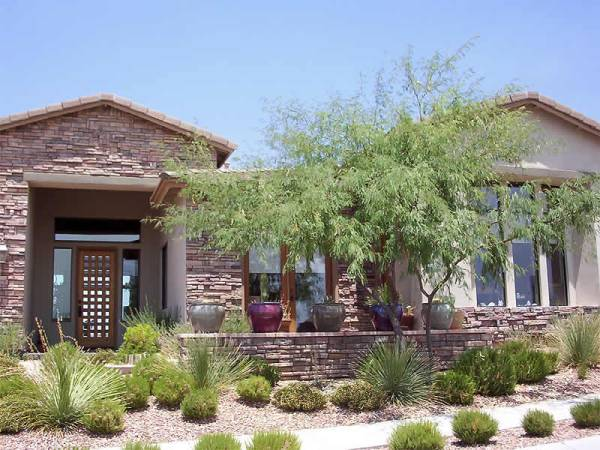 Frontyard desert landscaping design with native plants.
