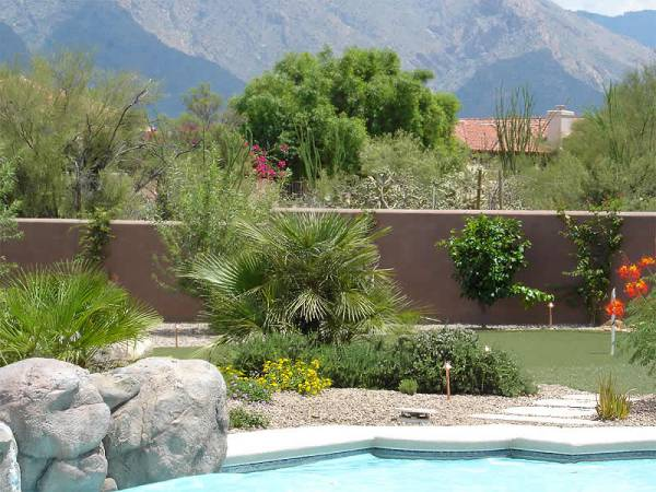 Poolside landscaping in Arizona with feature boulders on the edge of the pool.