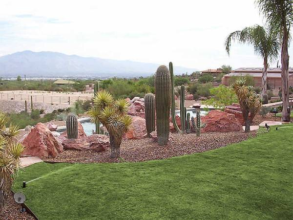 This desert backyard has added irrigation to provide the needed water for the turf.