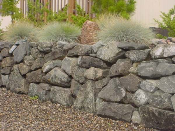 Fieldstone walls can look good when they are tight with no gaps, or left to have more of a rubble wall appearance like this.