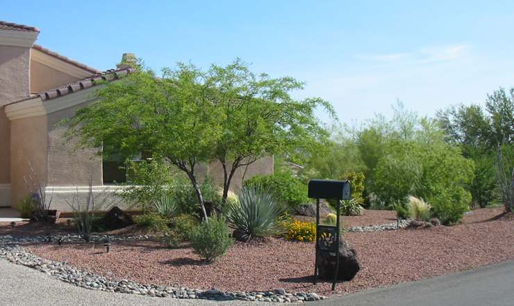 This front yard design extends around the side where native desert plants alongside a dry creek bed resemble an oasis.