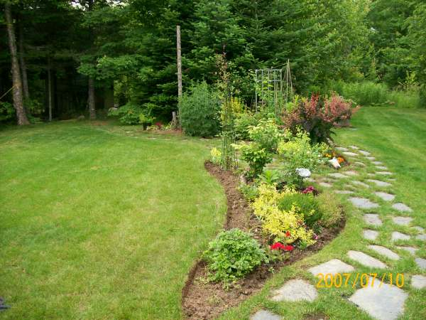 Design a backyard to blend in with the existing wild trees and shrubs.