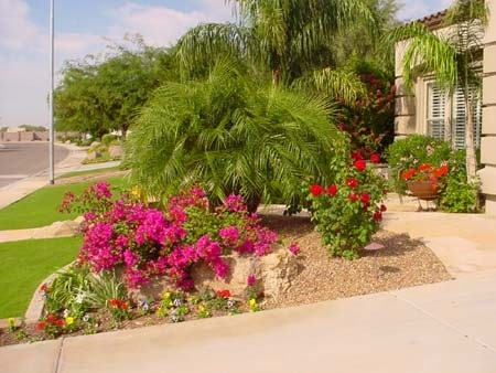 Desert landscaping can still be lush with proper irrigation installed.
