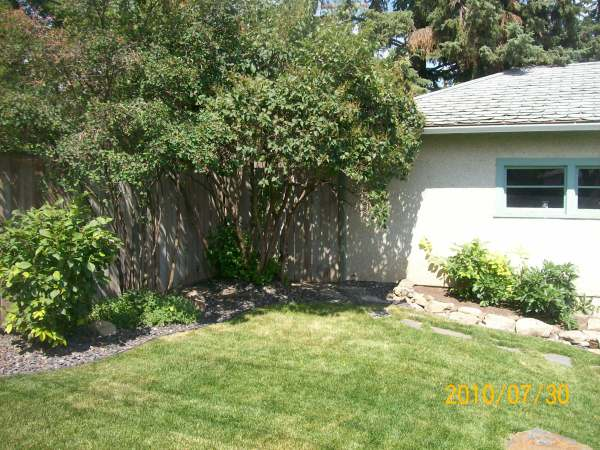 Using curves with edging creates a softer more informal feel in your yard.