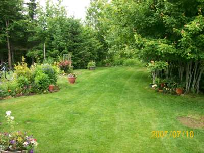 Flowerbeds add beauty to any yard and make great borders.
