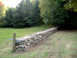 A nice countryside stone wall provides a low fence before disappearing into the trees.