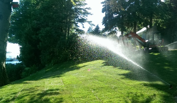 In-ground irrigation is handy to have for those of you that can't be there to water your newly laid sod.