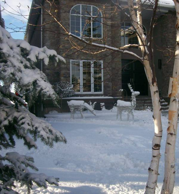 Deer have become a very popular outdoor decorating idea for Christmas over the last few years.