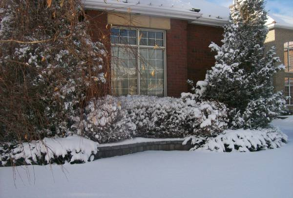 A well designed garden can look good in winter too. Balance is one of the most important aspects of landscape design.