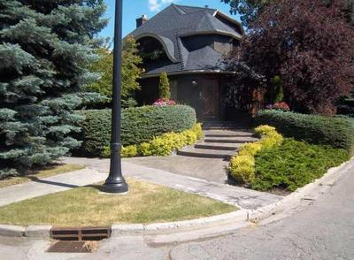 Plant and tree ideas from older neighborhoods will show you the matured size.