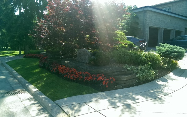 A nicely designed front garden bed with more emphasis placed on form than colour has great curb appeal.