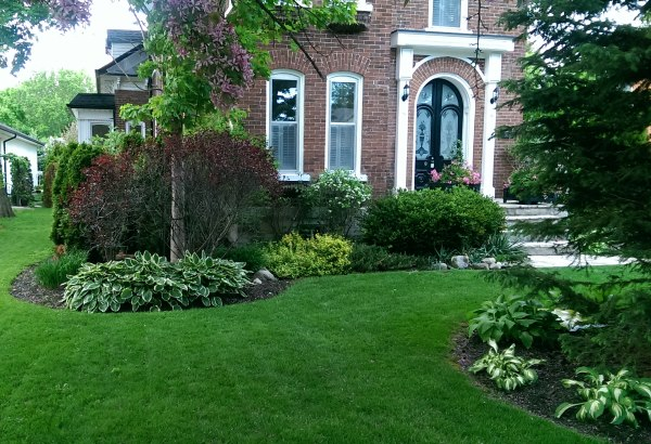 An older home with a well manicured lawn weaving through front yard garden beds.