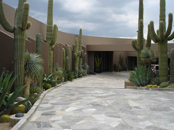 This driveway landscaping design has native desert plants complimenting a natural flagstone driveway.