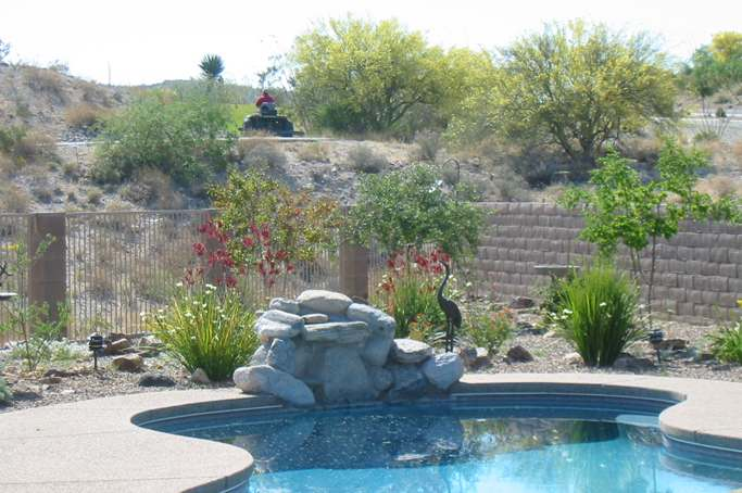 Desert landscaping often incorporates decorative rocks, gravel, small boulders, and fieldstones as features and groundcovers.
