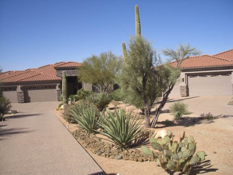 Driveway landscaping in the desert. A dry creek bed meanders down through the yard and native desert plants to the street.