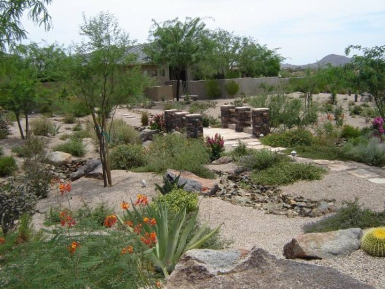 A stepping stone path strolls past hearty shrubs in this large desert yard.