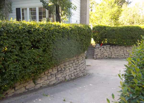 These stone retaining walls were built using reclaimed concrete.